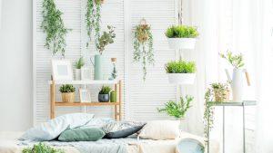 indoor garden featured image