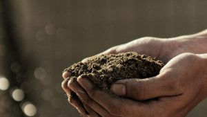 soil kits featured image