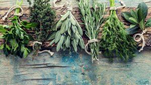 herbs scaled 2550x1434 1