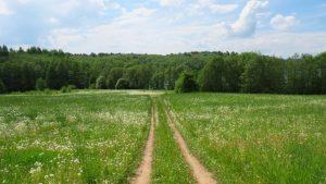 trail scaled 2550x1434 1
